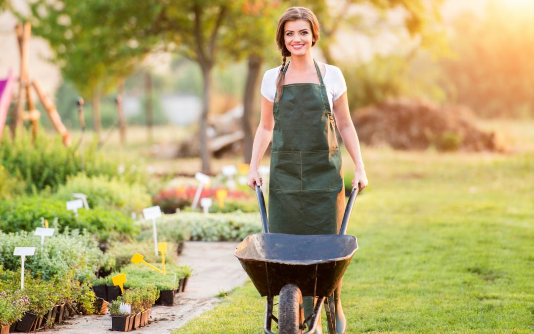 5 Home Maintenance Tasks You Should Tackle in Spring