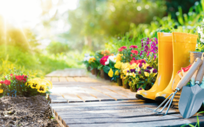Your Gardening To-Do List
